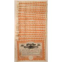 Pioche (Nevada) Mines Company Stock Certificates  (118849)