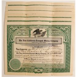 New California Tonopah Mining Stocks (8)  (80647)