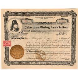 Calaveras Mining Association Stock  (119760)