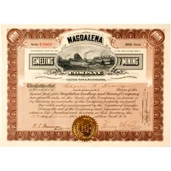 Magdalena Smelting & Mining Co. Stock Certificate, Oaxaca, Mexico 1907  (59087)