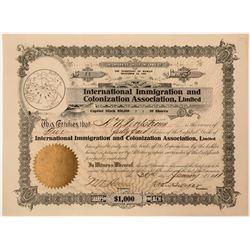 International Immigration and Colonization Assoc., LTD  (115889)