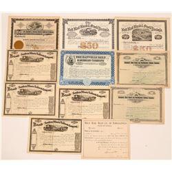 Illinois and Indiana Unissued Railroad Stocks  (11)  (111666)
