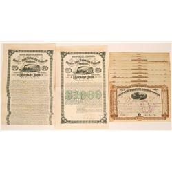 Flint and Pere Marquette Railroad Company Stocks and Bonds  (117504)