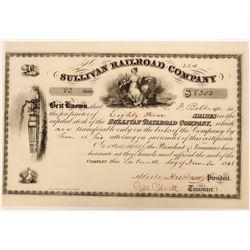 Stock in the Sullivan Railroad Company  (110533)