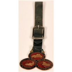 Fancy, colorful Cloisonne Pictorial FOB  (118186)