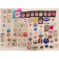 Third Party Candidate Campaign Buttons & More  (118141)