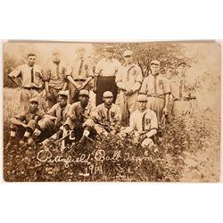 Pittsfiled Baseball RPC  (119699)