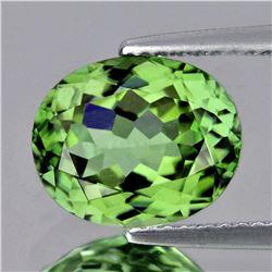 Natural AAA Green Apatite - 3.92 Ct - FLawless