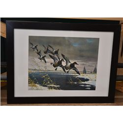 Winter Canvasback Signed Print by Les C. Kouba