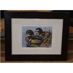Pair of Wood Ducks Print
