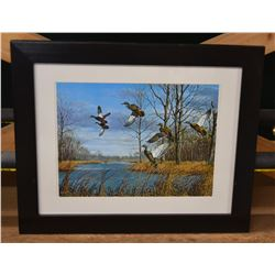 Maass Mallard Ducks Print