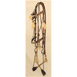 Rawlins Horsehair Bridle