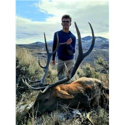 Colorado Fully Guided Archery Elk Hunt for 2021