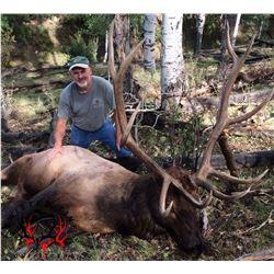 Colorado Archery OTC DYI Elk hunt for three with lodging