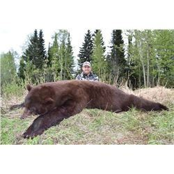 BC Spring Black Bear Hunt