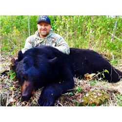 MOA Outfitters Canada Black Bear Hunt 1 Hunter 5 Days