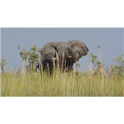 Photo Safari, South Africa, 2 Couples, 7 Days/5 Day Safari