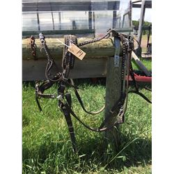 Set of Pony harness comes with lines,