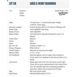 Jared & Wendy Boardman - 175 Weaned Heifers