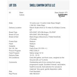 Shiell Canyon Cattle LLC - 93 Steers