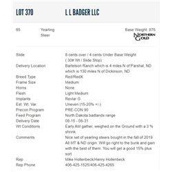 L L Badger LLC - 65 Steers