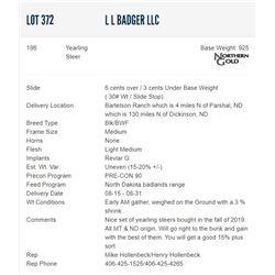 L L Badger LLC - 186 Steers