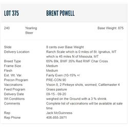 Brent Powell - 240 Steers