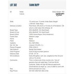 Fawn Rupp - 92 Heifers