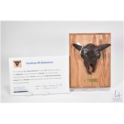 """G.C. Wentworth """"Buffalo Skull"""" cast bronze sculpture on wooden wall mount plaque with COA, 8"""" X 6"""""""