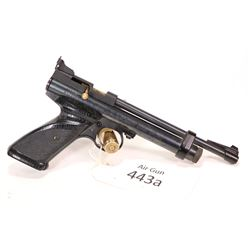 Co2 Pistol Crosman model 2240, .22 single shot bolt action, [Blued style finish, wooden checkered ta