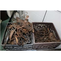 Two crates containing a selection of vintage leg hold traps, approximately 40 count.