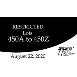 Virtual VIDEO Preview of Restricted Lots in the 450 group