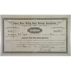 James River Valley Stock Raising Association, 1884 I/U Stock Certificate.