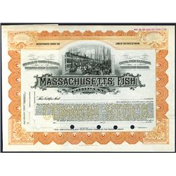 Massachusetts Fish Co., ca.1905-1920 Specimen Stock.