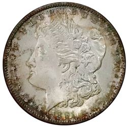 USA (San Francisco Mint), Morgan dollar, 1891-S, Paramount MS 65, ex-Redfield.