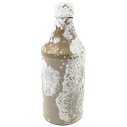 Encrusted stoneware ale bottle from an unidentified early-1800s wreck in the Florida Keys.