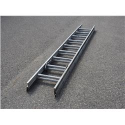 20ft Aluminum Extension Ladder