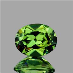 Natural AAA Fire Premium Green Demantoid