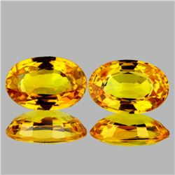 Natural Golden Yellow Sapphire Pair 6x4 MM - VVS