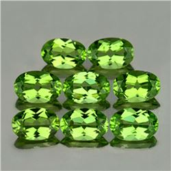 Natural AAA Green Peridot 8 Pcs{Flawless-VVS1}