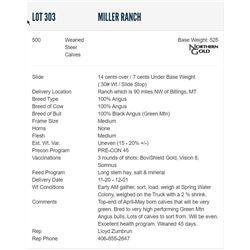 Miller Ranch - 500 Weaned Steers