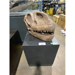 LIFE SIZE MAMENCHISAURUS SKULL IN TRANSPORT DISPLAY STAND
