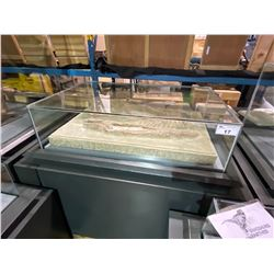 LIFE SIZE YANGCHUANOSAURUS SKULL DIG SLAB IN GLASS COVERED TRANSPORT DISPLAY CASE