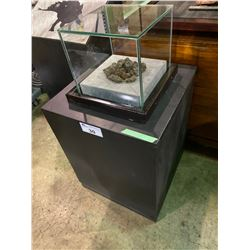 REAL FOSSILIZED DUNG IN GLASS COVERED TRANSPORT DISPLAY CASE