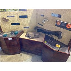 """""""SKIN AND BONES (AND EGGS)"""" INTERACTIVE STATION WITH DISPLAY BONES, ILLUMINATED FOSSIL &"""