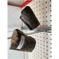 2 REAL FOSSILIZED HADROSUR BONES