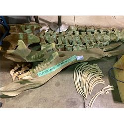 ASSORTED YUNNANOSAURUS DINOSAUR BONES & PLAYBELADON LOWER MANDIBLE WITH TUSKS