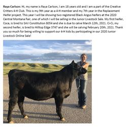 Carlson, Raya - GRAND Market Heifer