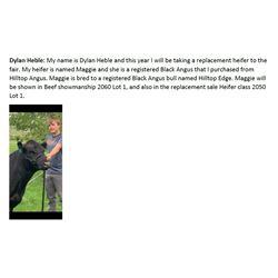 Heble, Dylan - RESERVE Market Heifer