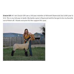 Gill, Gracie - Market Lamb